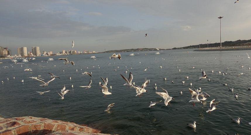 دریاچه چیتگر و نخستین مرکز خرید خطی در فضای باز