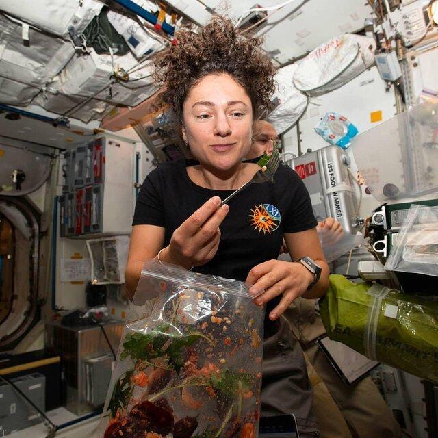 کشاورزی در ایستگاه فضایی بینالمللی توسط فضانوردان (عکس)