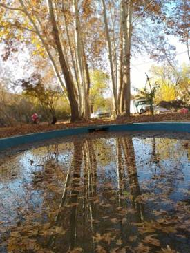 عکس های پاییزی زیبا از باغ جهانی پهلوانپور