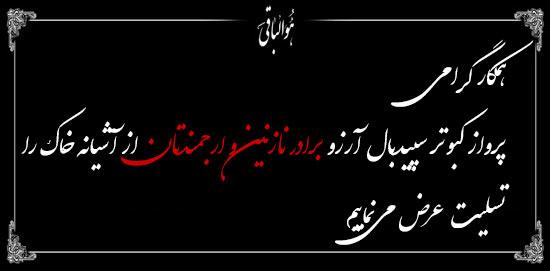 اجرای طرح تفسیر موضوعی قرآن در حرم شاه سید علی(ع)
