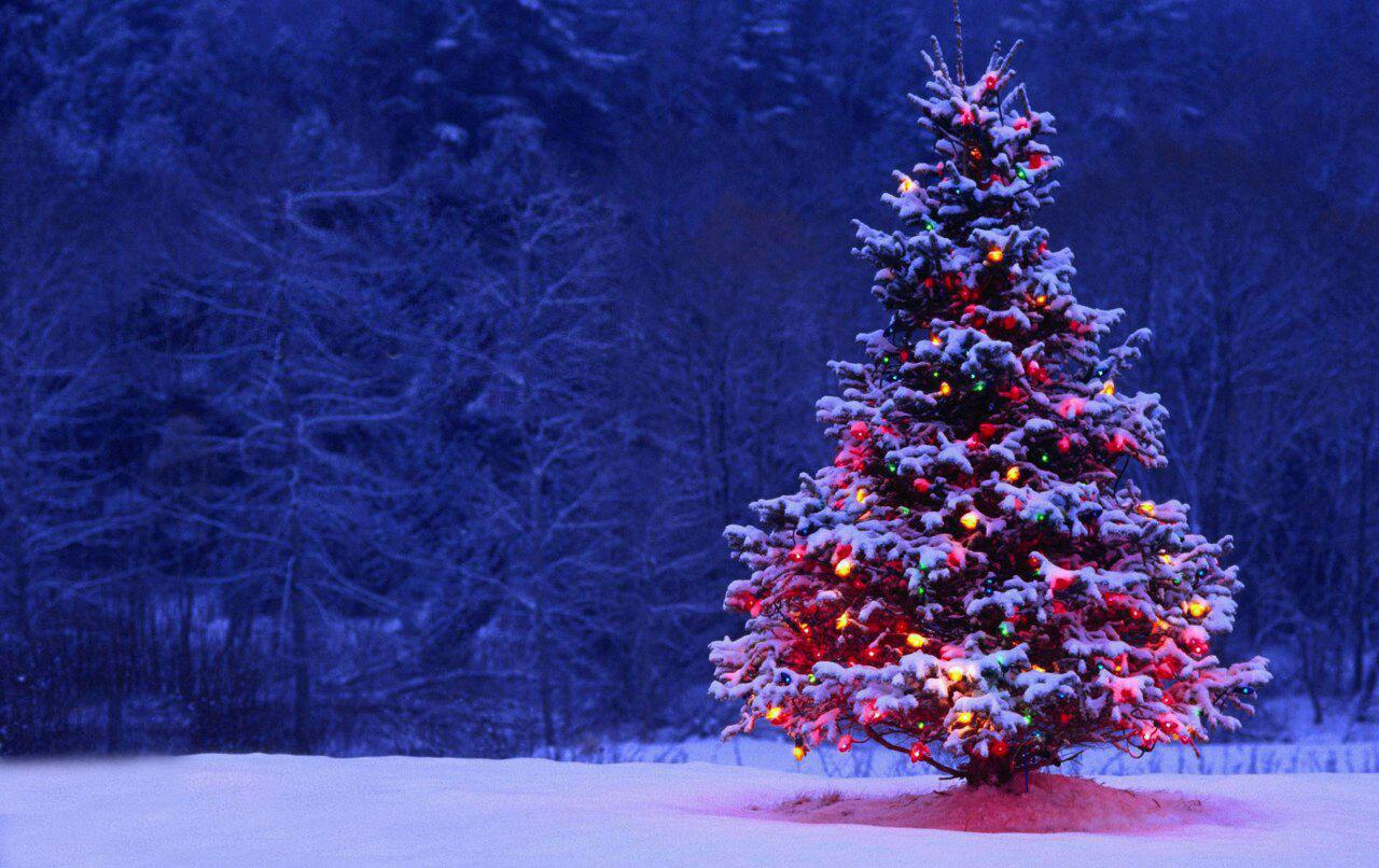 اس ام اس تبریک کریسمس 2020 همراه با ترجمه انگلیسی