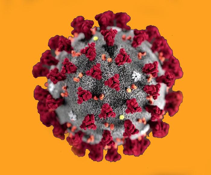 اگر کرونا ویروس گرفتیم چیکار کنیم ؟
