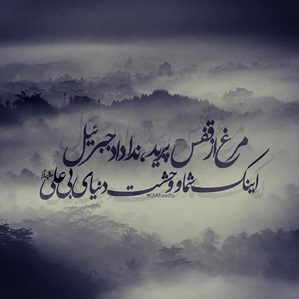 عکس پروفایل شهادت حضرت علی «ع» + متن ها و اشعار جانسوز تسلیت شب قدر