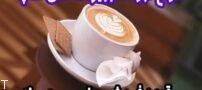 انواع قهوه تجهیزات کافی شاپ قهوه فروشی