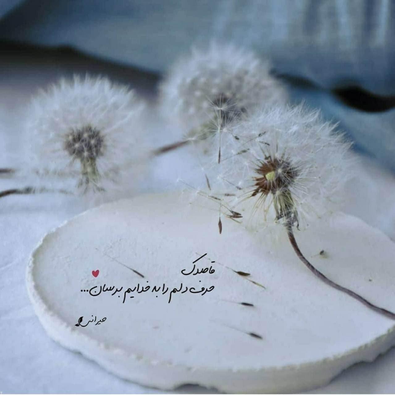 عکس پروفایل با نوشته های عاشقانه و مفهومی زیبا (۲۸)