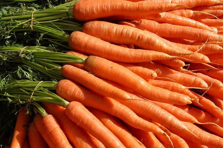 روش های تازه نگه داشتن هویج + طرز تهیه ترشی هویج