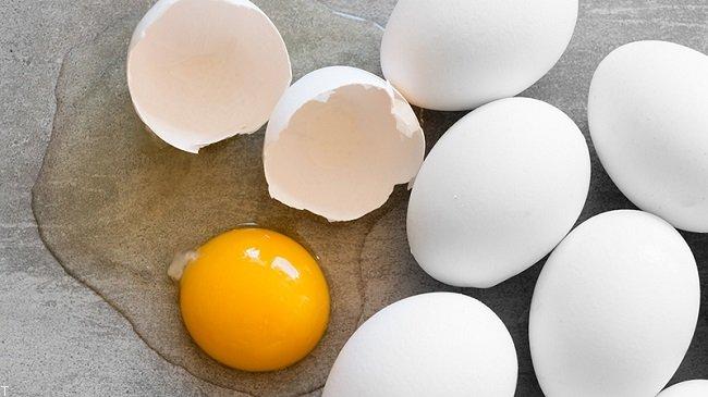 نکاتی واجب در مورد تخم مرغ