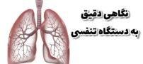 حقیقت های جالب درباره دستگاه تنفسی