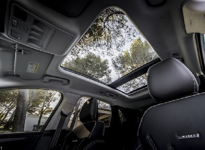 اتومبیل هایی با سقف پانوراما (عکس)