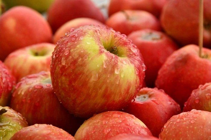 لاغری با سیب خوردن (لاغری با تغذیه)