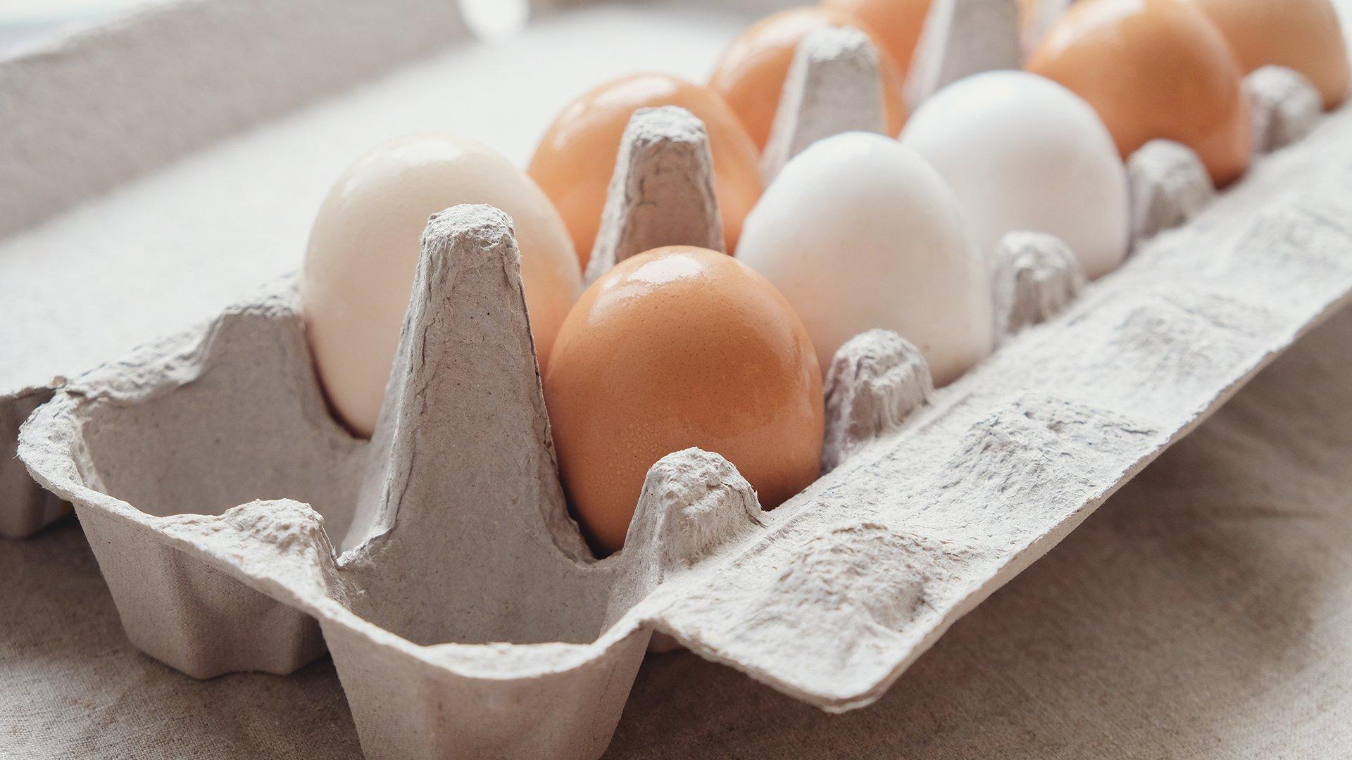 چگونه و از کجا بفهمیم سن تخم مرغ چقدر است؟